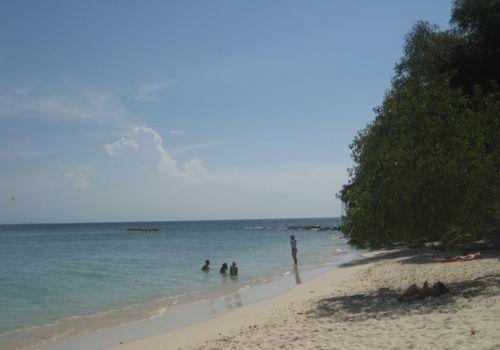Kota Kinabalu Tropical Island